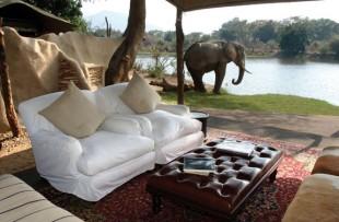 Tsika_Island_Camp_Chonge_Safaris_DH (2)