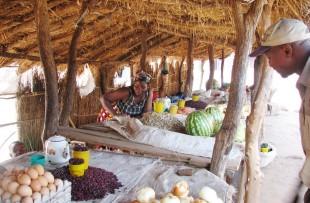 Zambia_Market_Wiki